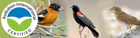 AudubonHeader
